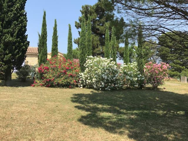 Mazet provençal avec piscine et terrasses