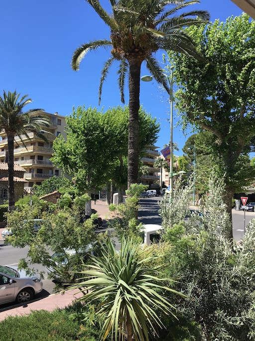 Vue verdure sur Axe principal vers Cannes
