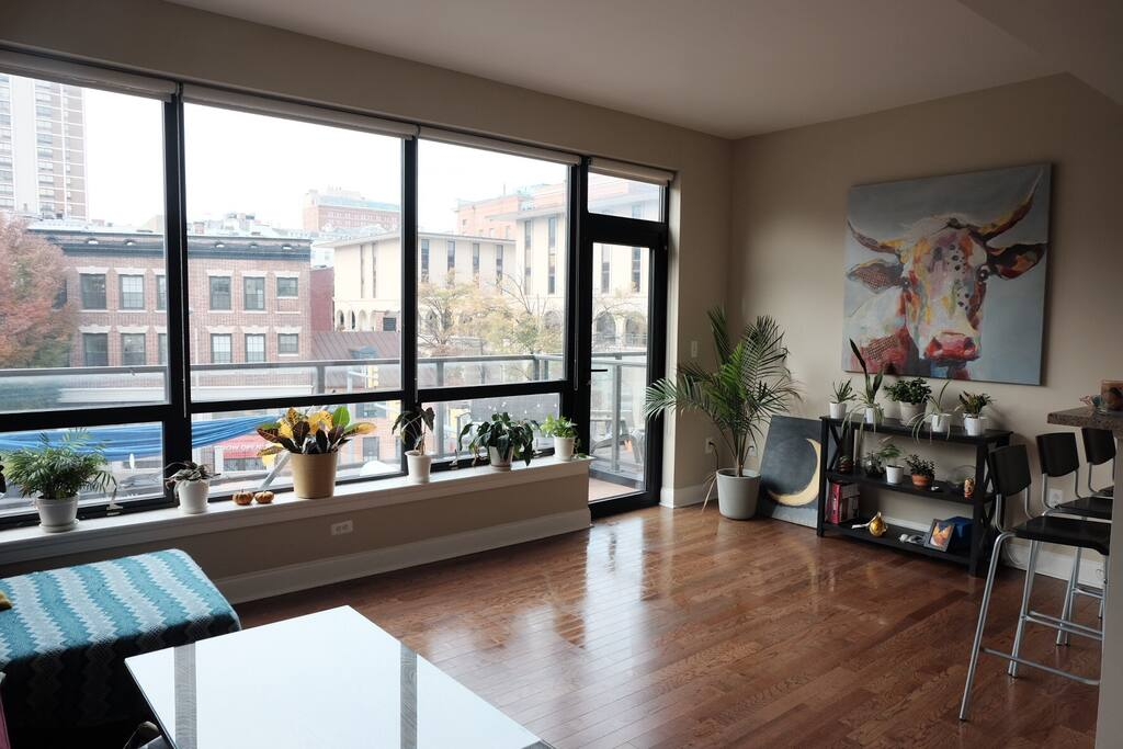 Light Filled 1 Bedroom In Downtown Baltimore Apartments