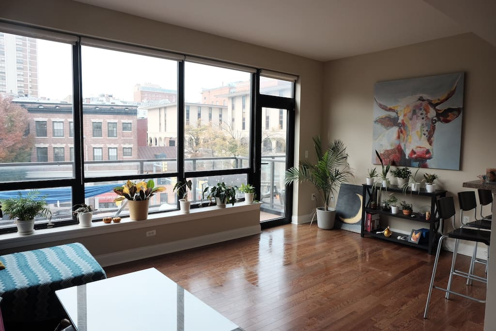 Light filled 1 bedroom in downtown baltimore apartments 3 bedroom apartments in baltimore city