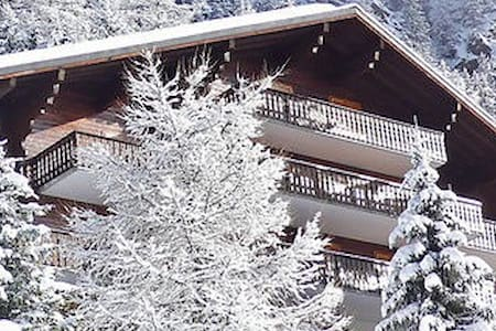 Champex-Lac, 2 rooms in mountain cottage/chalet - Champex-Lac