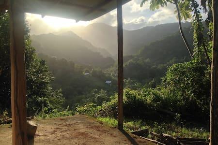 Natural living & autonomous MadeInZion Org - La Plaine