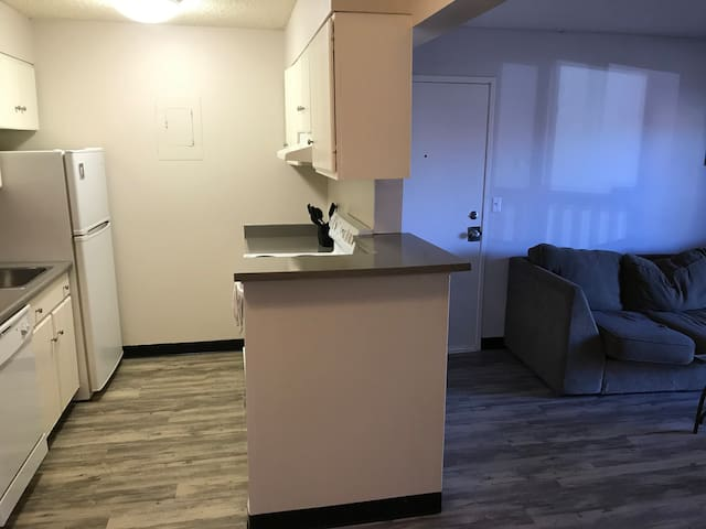 1 Bedroom in the heart of Denver