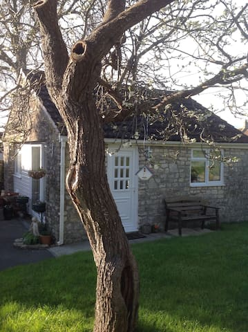 Cosy annexe - Bath and North East Somerset - Bed & Breakfast
