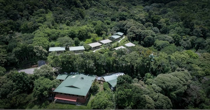 Fantastic room for nature vacation in Cloud Forest