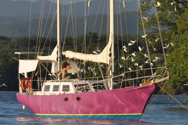 Sailing cruise in San Blas islands