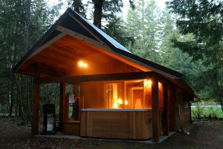 Rainier Cabin at Mt Rainier - HOT TUB