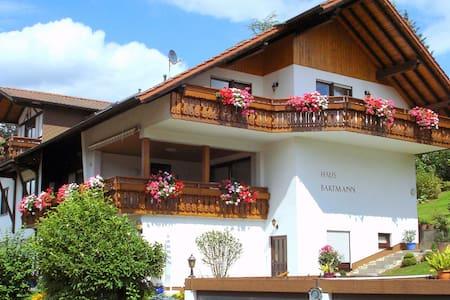 Great Apartment Bartmann 5435.2 - Beerfelden - Apartament