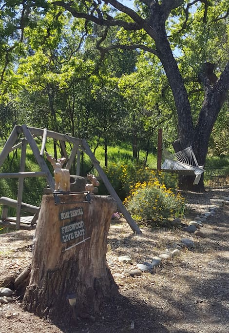 Hammock & Swing Resting Area