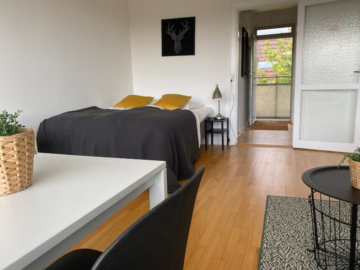 H14, cozy one room studio in suburb to cph