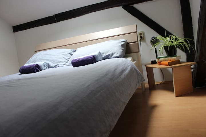 Private room for 1 in city centre - 오시예크(Osijek)