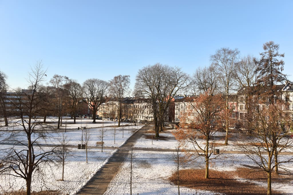 View to Sofienbergsparken. View from Third floor living & bed room.