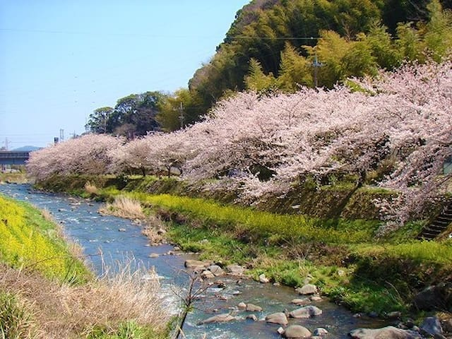 Beautiful nature heals your mind and body!Pets OK! - Yugawara-machi - Wohnung
