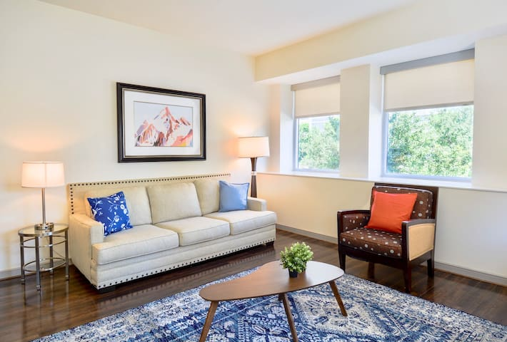 Light and Bright 1BR Apt in the heart of downtown