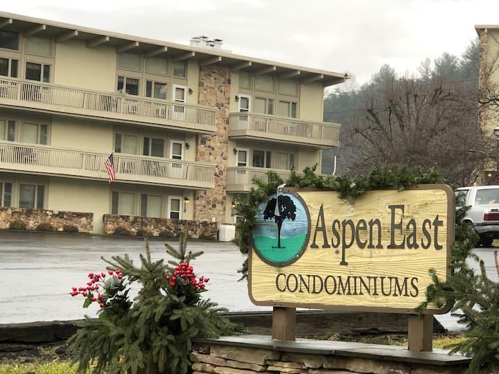 Ski and Golf Condo Aspen East Condominiums