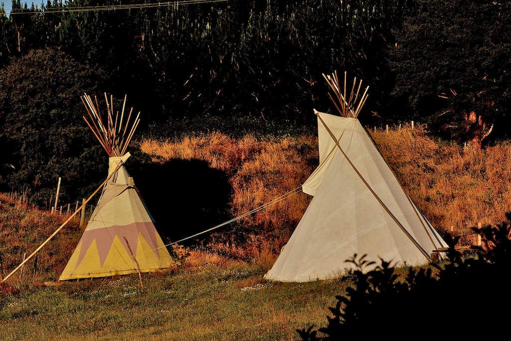 We have tipi stays in the summer.