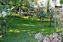 Enjoy a lazy late afternoon in your Family HAMMOCK in the beautiful natural orchard garden with a View. Or enjoy a meal - at the picnic table - in between the fruit trees