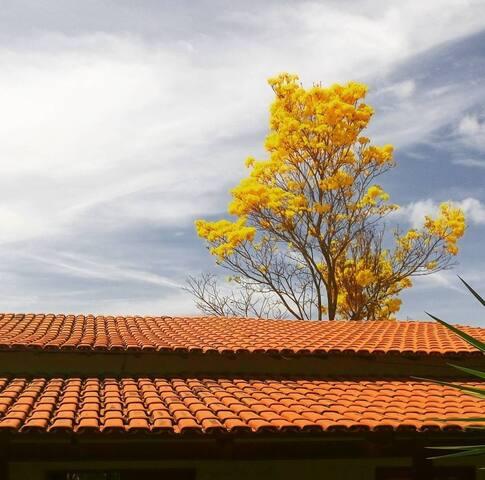 Casa rústica em condomínio com natureza!