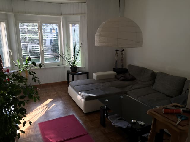 Appartement Lumineux  Luminous Flat - Bienne - Apartment