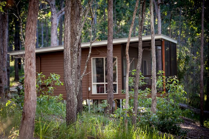 Pavilions in the Treetop - Mount Cotton - Cabin
