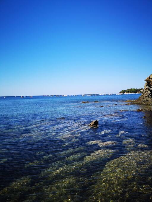 Spiagge rocciose