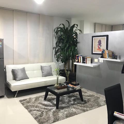 Studio loft apartment