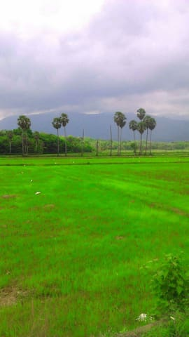 Village Home, Palakkad ( inc- free Breakfast)