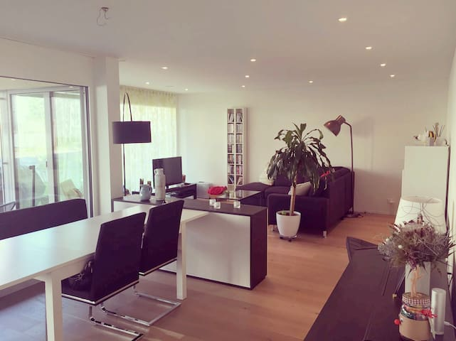 Modern room close to Baden & Zurich - Neuenhof - 公寓