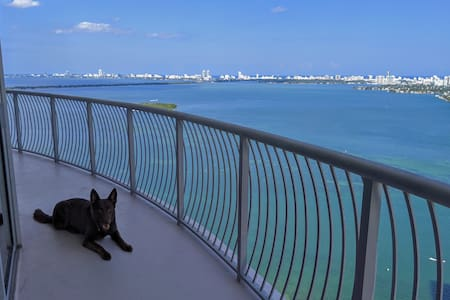 Great Location! Enjoy the view with me and my dog!