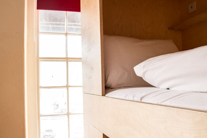 Single bunk bed in a dormitory style room - Cardiff