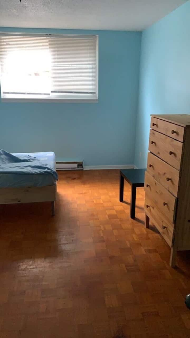 Clean and cozy appartement near dt Ottawa