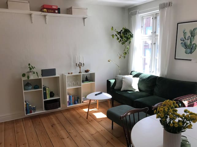 2 bedroom apartment in the center of Aarhus