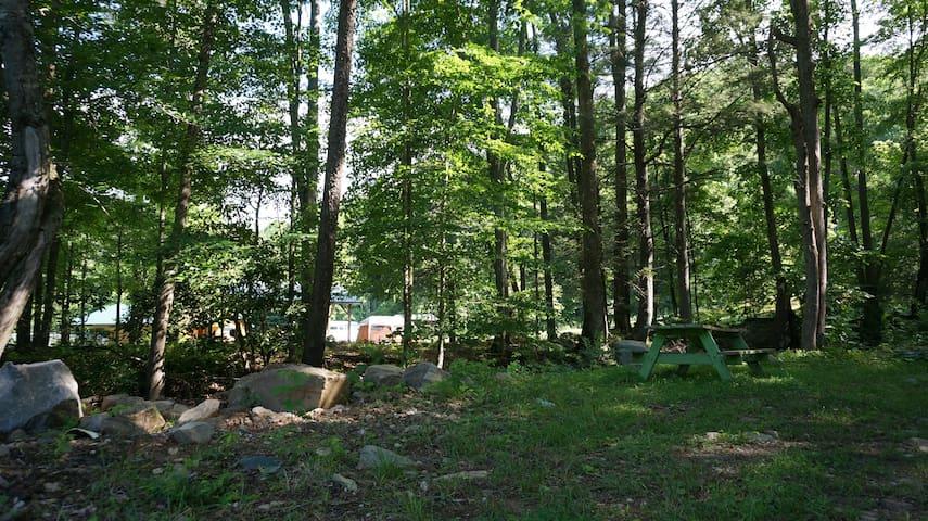 Seedkeeper's Cottage - a primitive  little getaway