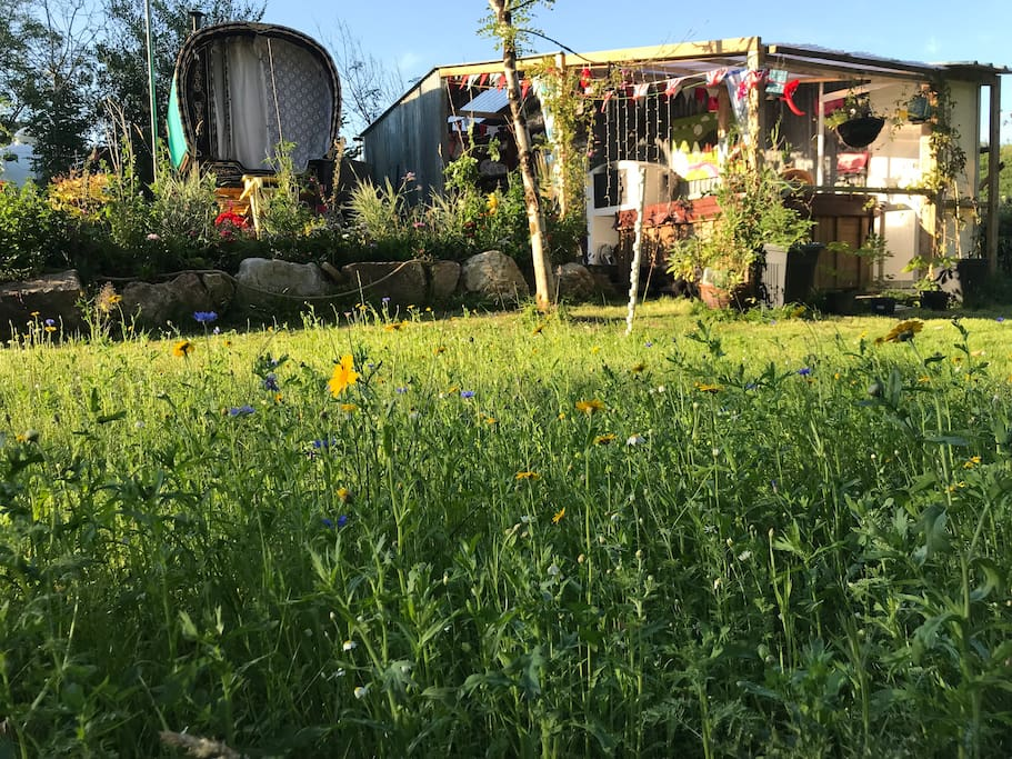 Melin Mabes is a quiet site... we politely ask that you leave no trace & make no noise to disturb surrounding wildlife  Peace and happiness...  Mabel's caravan of love and blooming wildflower garden