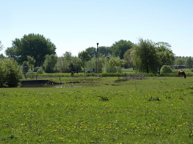 Uitzicht paarden weide en  Golf & Country Club Regthuys