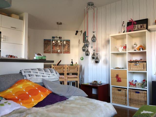 Schlafsofa in Moderner Wohnung