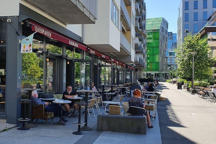 Moderne leilighet sentralt i Oslo!