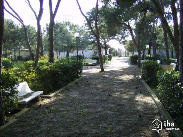 appartamento 5 persone, spiaggia inclusa - Baia Domizia - Apartmen