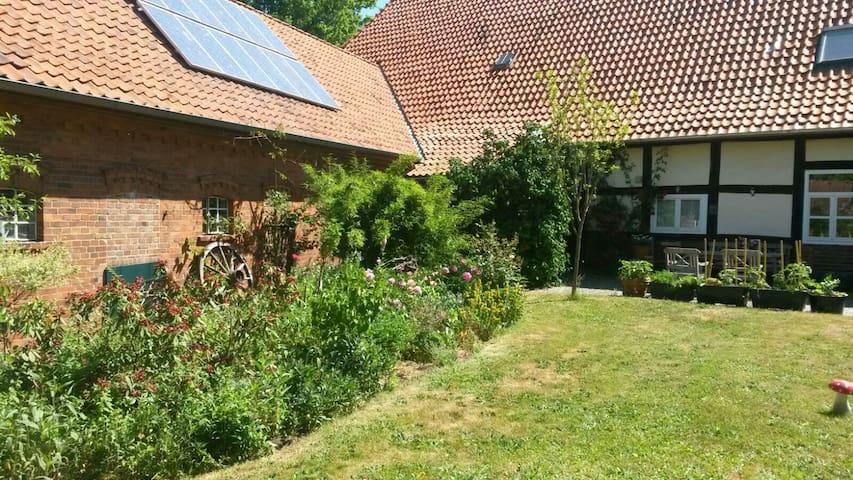 Ferienwohnung im alten Fachwerhaus - Steimbke - Apartament