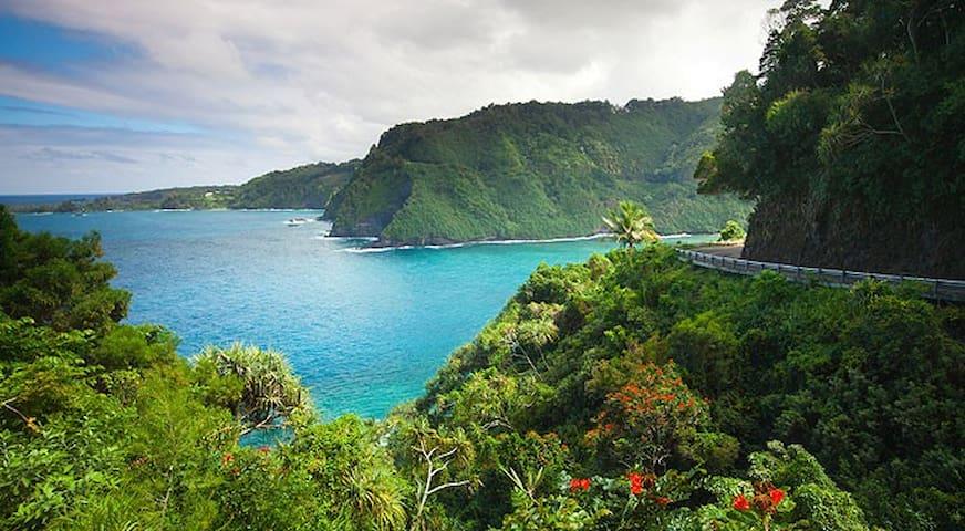 NEW!! HUGE Hawaiian Home w/ AC+ WIFI+ VIEWS!