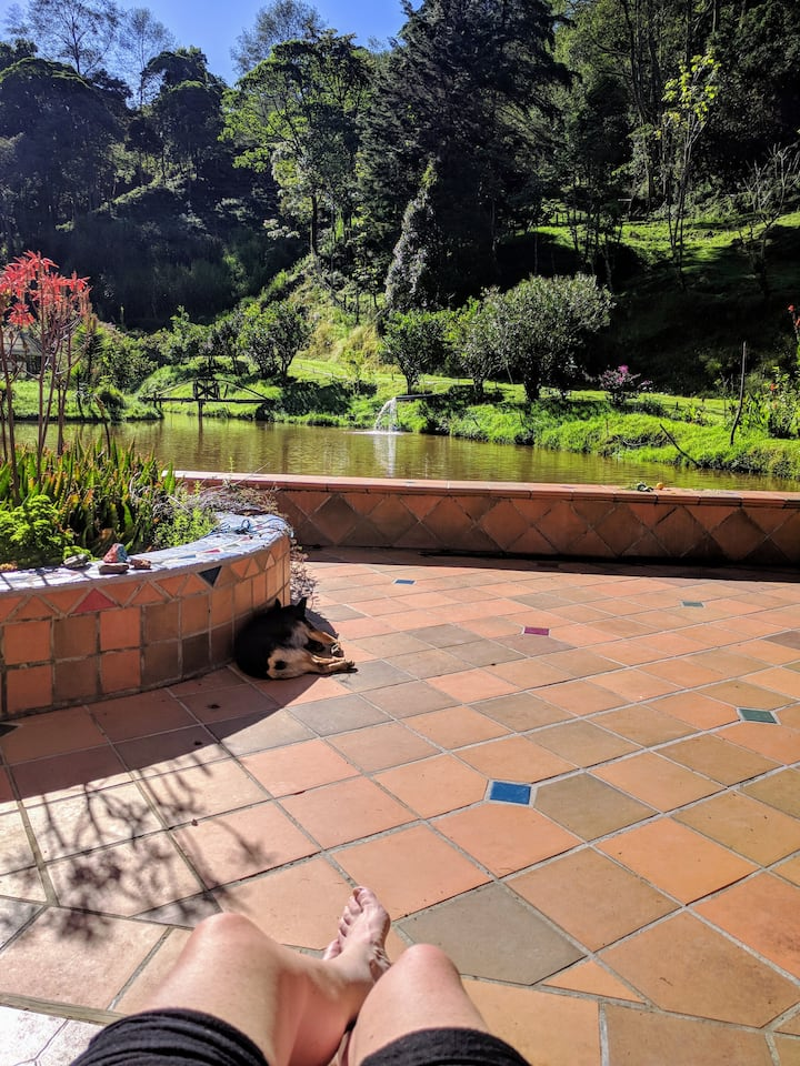 Hush Valley Lodges- Casa Lago ( The Lake house)