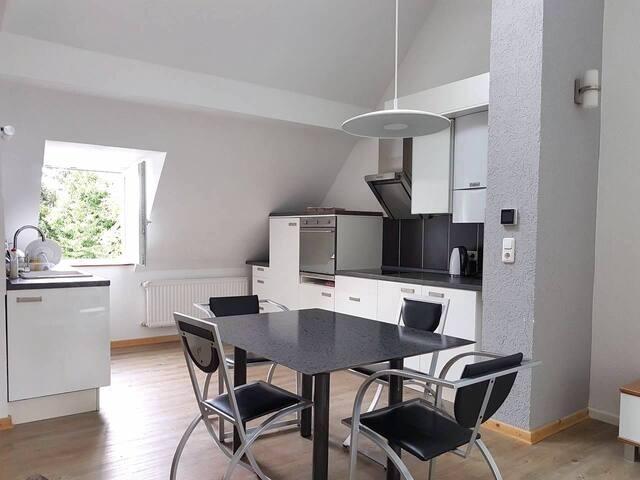 Helle, Moderne, Große Wohnung in Bonn