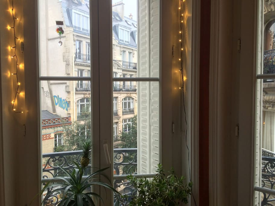 Typical Parisian buildings at the Windows