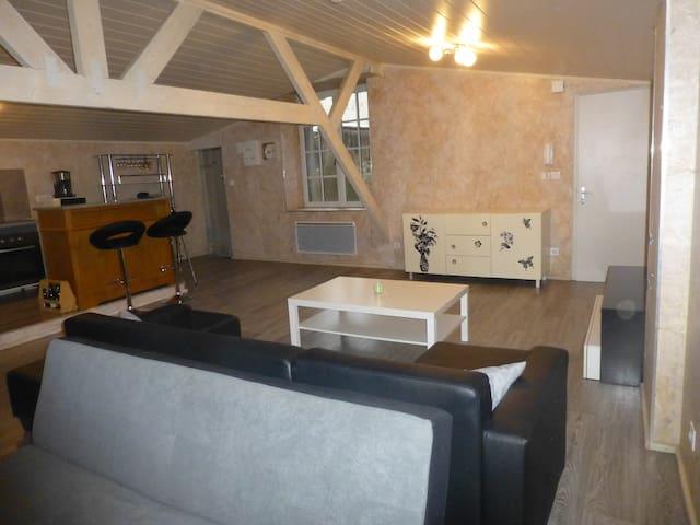 Studio atypique - Riom - Apartmen