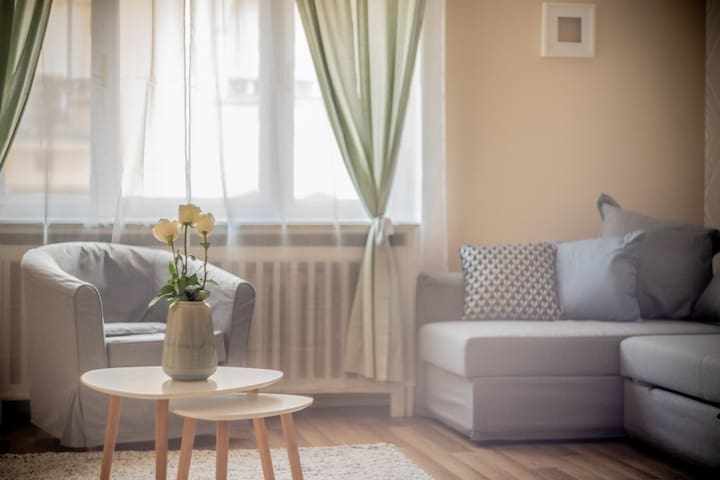Vivid flat with city-beat in the heart of Budapest