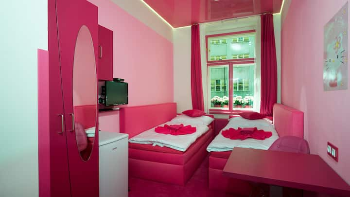 PRIVATE PINK ROOM/CITY CENTRE/AIR-CONDITION