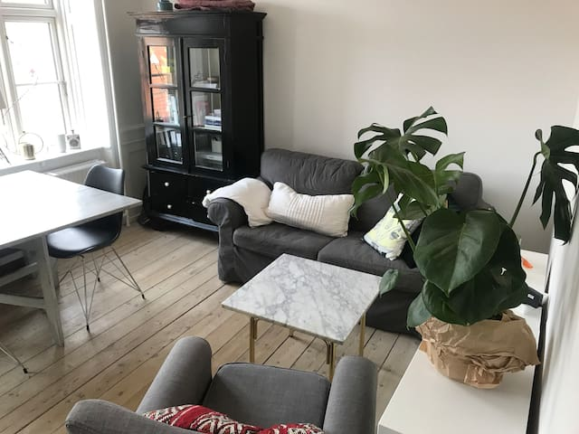Cozy apartment in the best location in Copenhagen