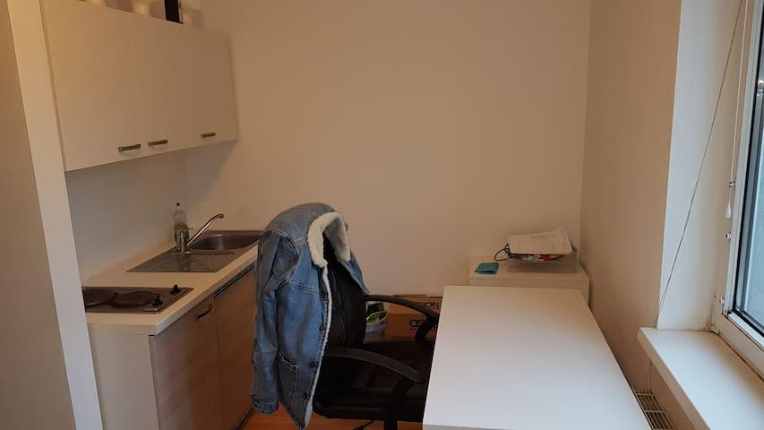 1 Zimmerwohnung am Stadtrand vom Linz im Grünen