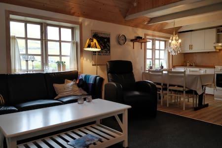 Hyggelig lejlighed med to værelser