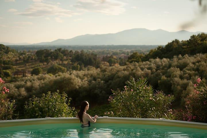 Bio-Farmhouse:panoramic pool overlooking vineyards - Serravalle Pistoiese - Jiné